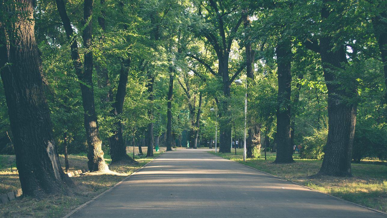 Panfilov Park