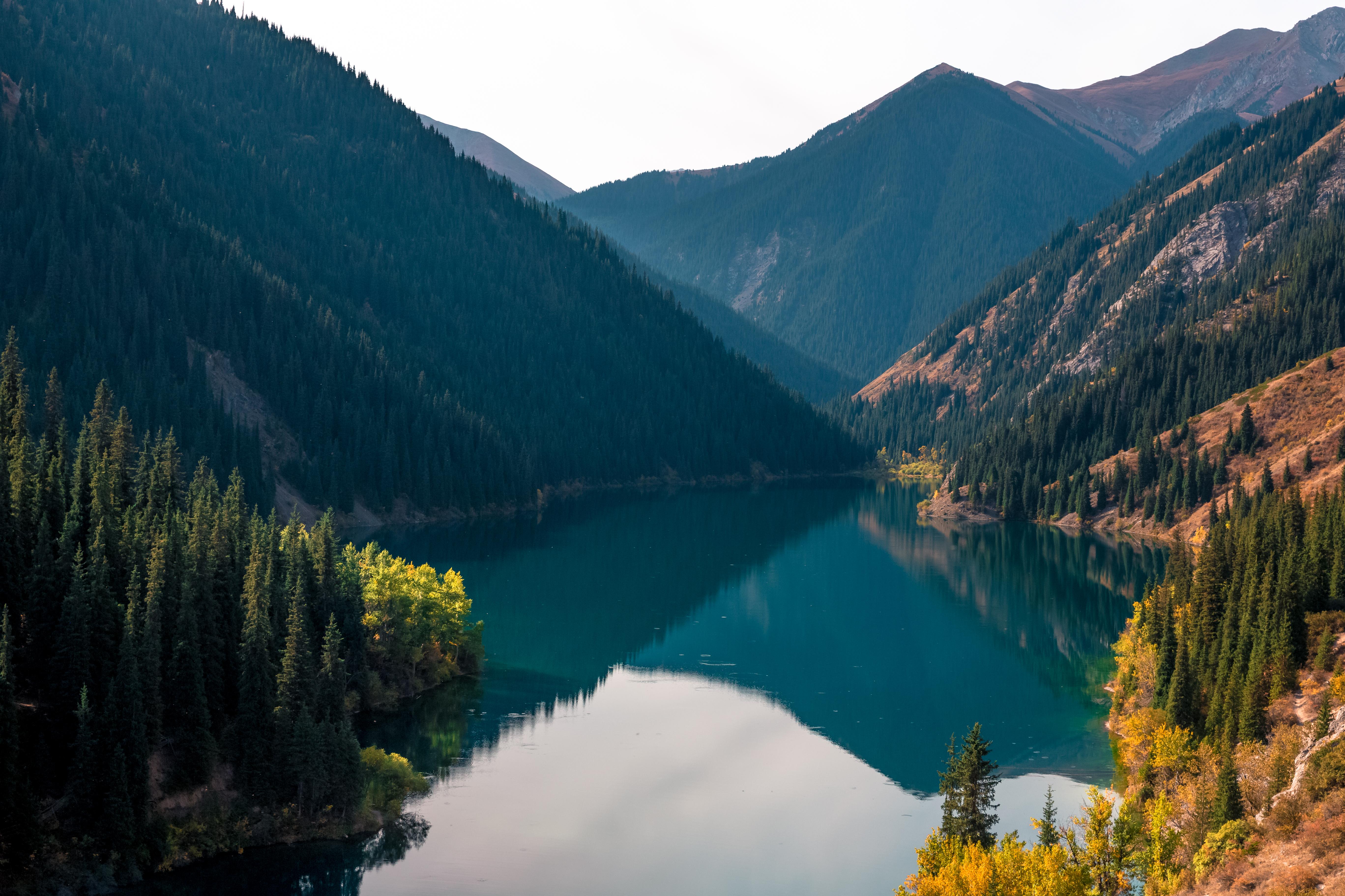 казахстана популярные картинки всех встречают