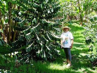 Maureen and Coffee Plants.jpg