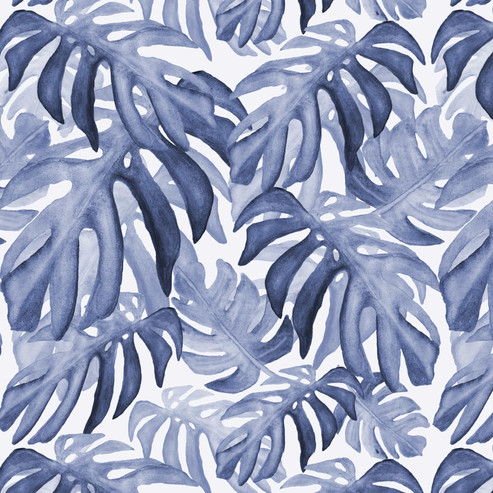 Monstera_lavender