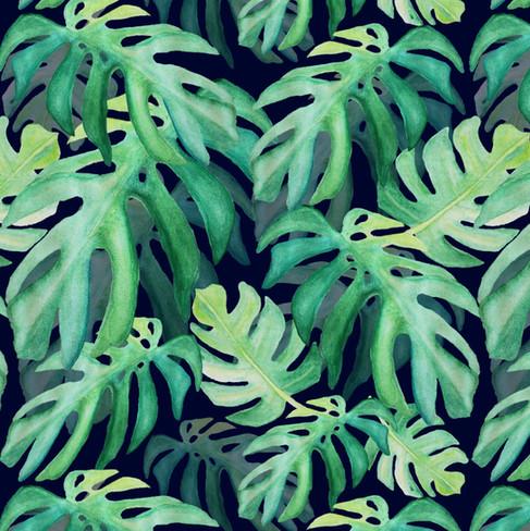Monstera_green hues