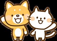 許認可法務犬猫