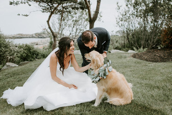 Enjoy Your Pet in Your Ceremony!