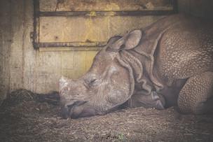 Zoo_Aquarium_018.jpg