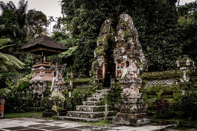 Bali_012.jpg