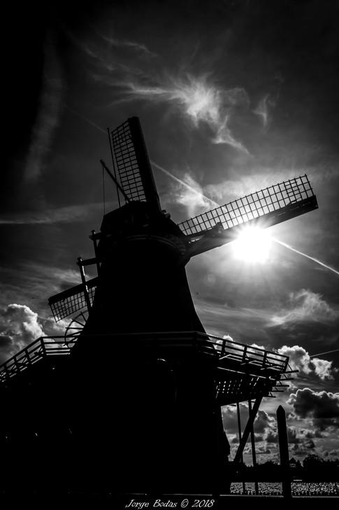 Holanda_022.jpg