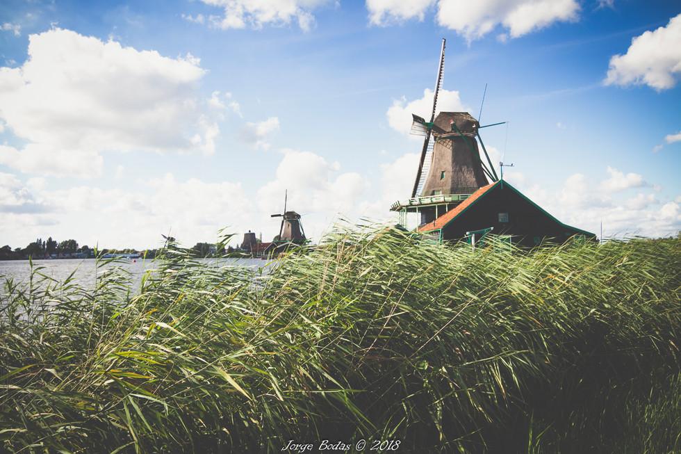 Holanda_021.jpg