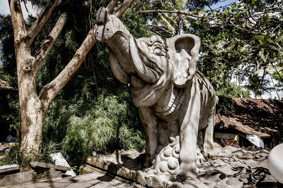 Bali_003.jpg