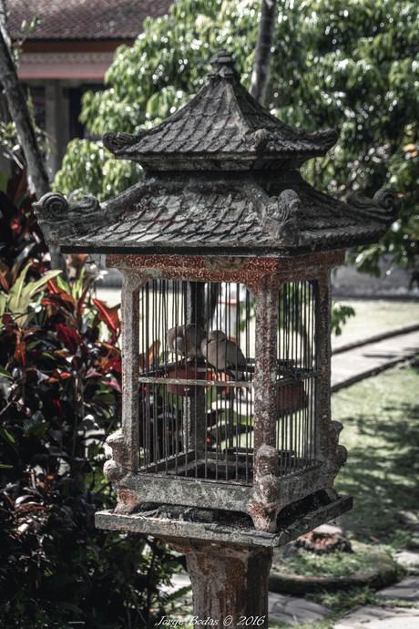 Bali_004.jpg