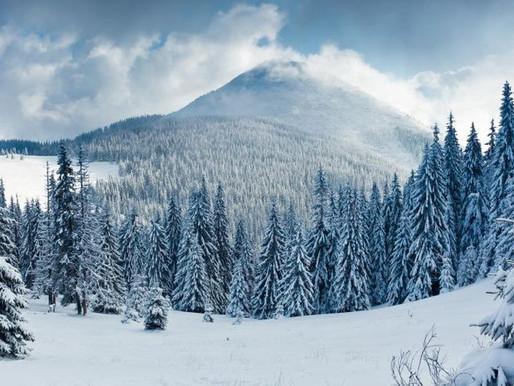 12 Consejos para Hacer Mejores Fotos en la Nieve. Por DZoom