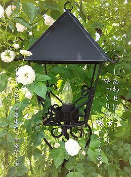 白いバラと外灯 試作版1.jpg