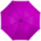 brolly-purp.png