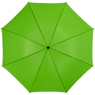 brolly-gr.png