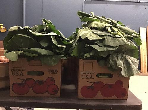 Collard Greens Full  Box