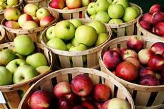 Apples (Peck)