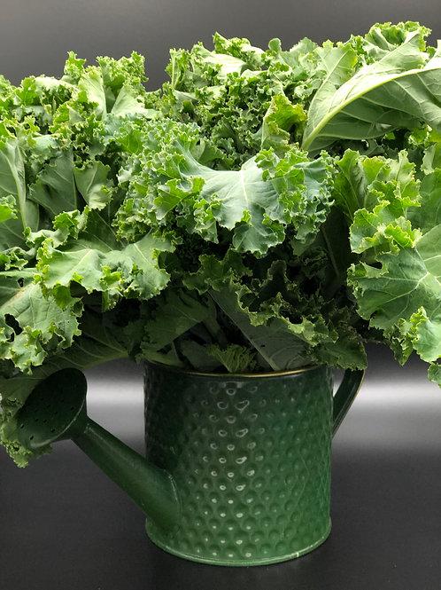Kale Full  Box