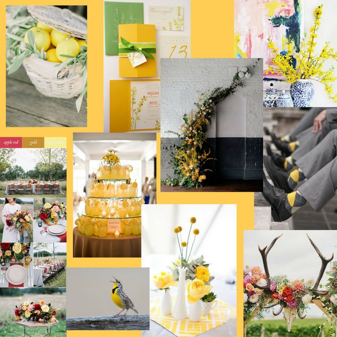 pantone spring 2018 color - meadowlark
