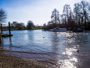 A Twickenham riverside walk
