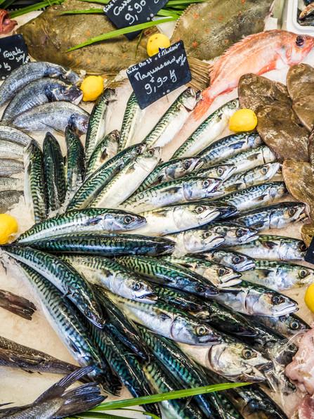 Marché aux poissons dans Bordeaux