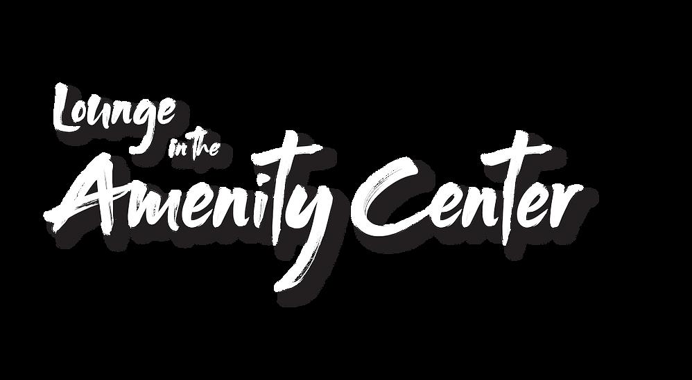 Amenity Center V2.png