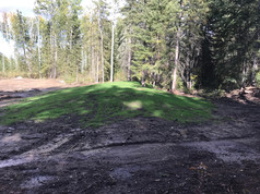 Sand mound: grass seeded and growing!