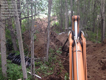 Trenching through trees