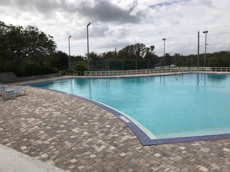 View of the Large Pool!