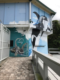 Large Pool Mural!