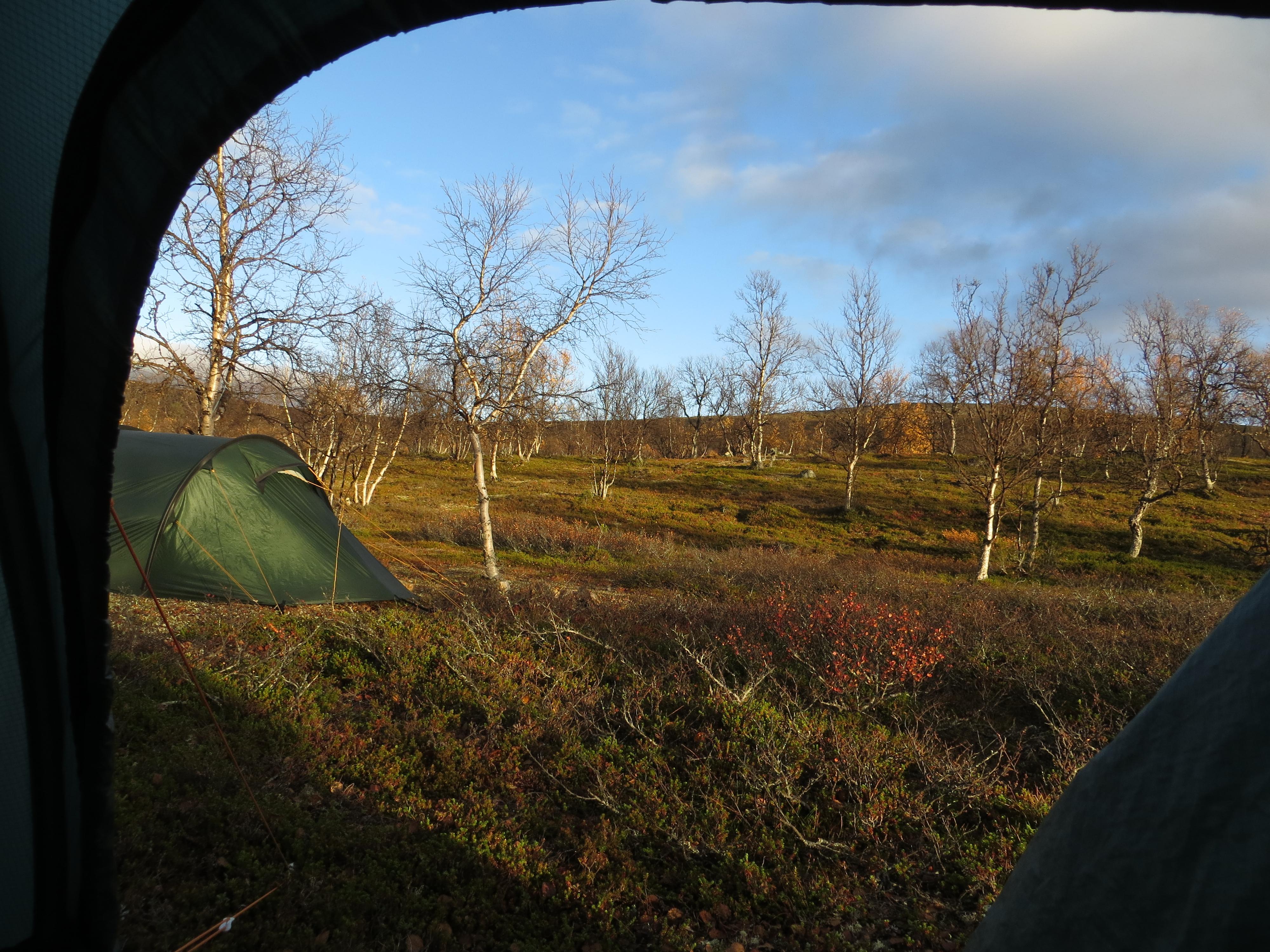 Teltta-aamu Muotkalla