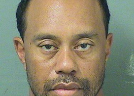 REAL: Hobo Homer Simpson Looking Mugshot - Tiger Woods Arrested for DUI in Jupiter