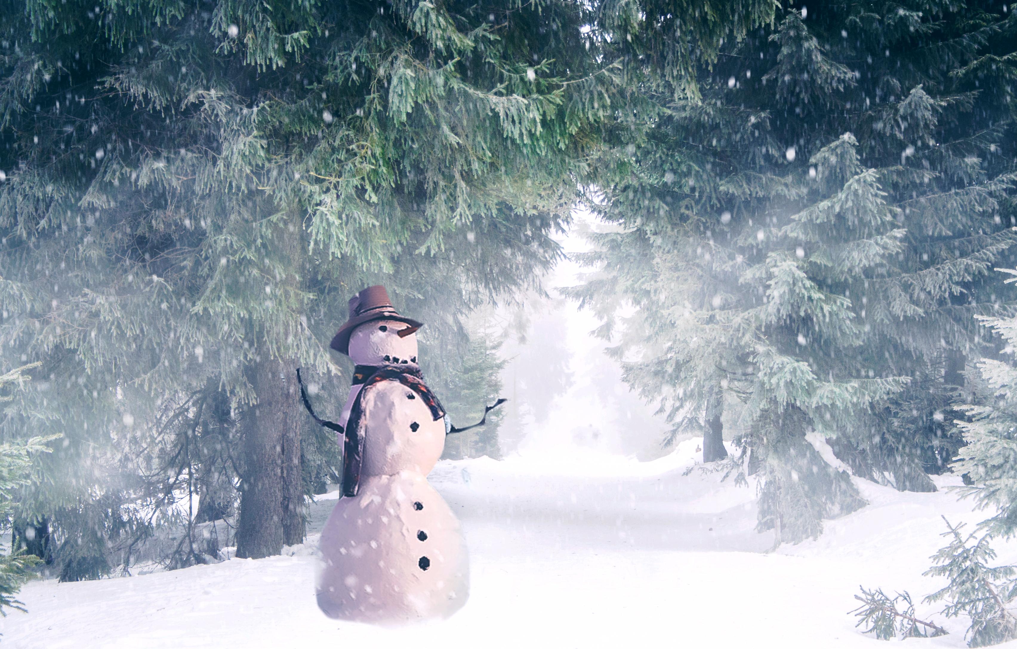 snowman2 (1)
