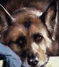 Commission pet portrait