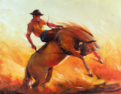 Cowboy riding