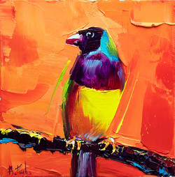 Lady Gouldian Finch painting