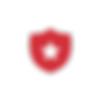 BB website icons-PublicSafety.png