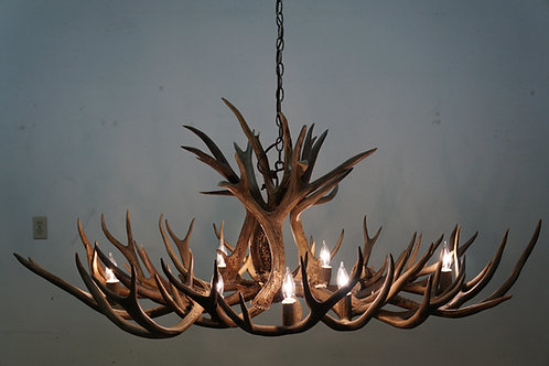Real Mule Deer Oval Chandelier