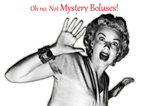 THE MYSTERY BOLUS