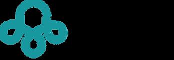 Bluering Design Logo. Website Designer in Norman, Oklahoma