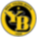 BSC_Young_Boys_Logo.svg.png