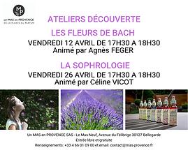 atelier découverte sophrologie, fleurs de bach, Agnès Feger, Céline Vicot, Mas en Provence, Bellegarde