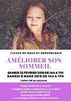 atelier sommeil avec fleurs de Bach, sophrologie, Céline Vicot, Agnès Feger
