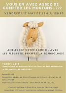 atelier sommeil fleurs de Bach et Sophrolgie, Céline Vicot et Agnès Fege, Bellegarde, Jonquières St Vincent, Centre Equilibre et Bien-être