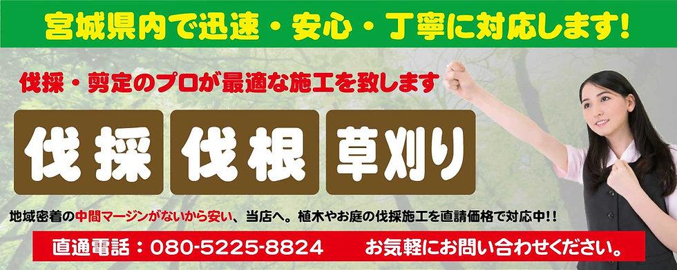 ホーム_シンプル_タイプ_仙台伐採草刈専門店③.jpg