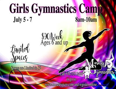 GirlsGymnasticscampflyer copy.jpg