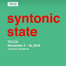 Syntonic State TULCA 2018