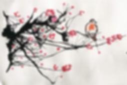shiatsu traditionnel.jpg