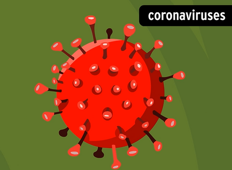 Coronavirus Update 4/1/20