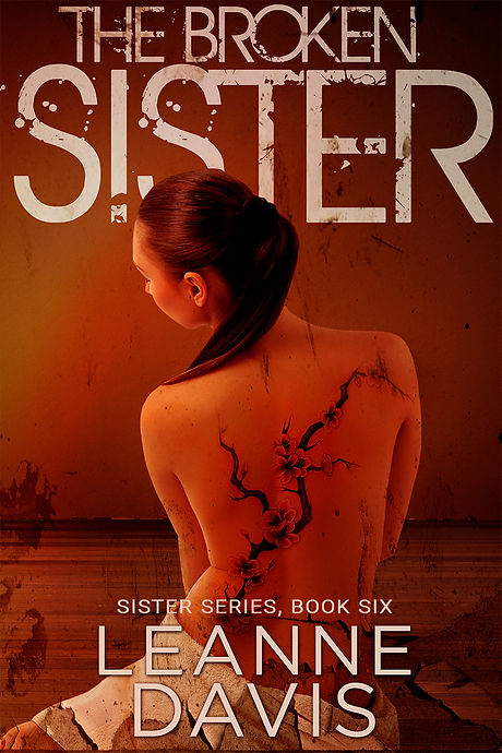 The Broken Sister Book Cover