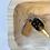 Thumbnail: Key Ring - Snap Closure