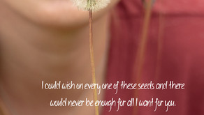Weeds, Seeds and Wishes
